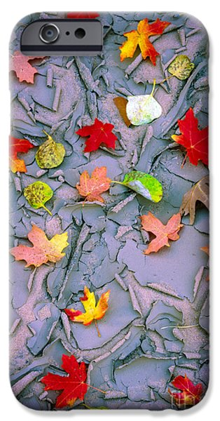 Floods Photographs iPhone Cases - Cracked Mud and Leaves iPhone Case by Inge Johnsson