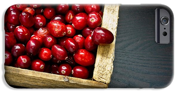 Berry iPhone Cases - Cranberries iPhone Case by Edward Fielding