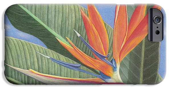 Recently Sold -  - Flora Drawings iPhone Cases - Crane Flower Paradise iPhone Case by Diana Hrabosky