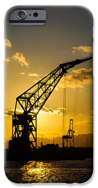 Cranes in the sunset iPhone Case by David Hill