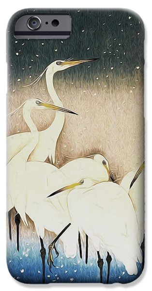 Conway iPhone Cases - Cranes  iPhone Case by Shanina Conway