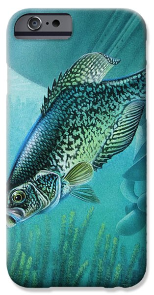 Crappie and Boat iPhone Case by JQ Licensing