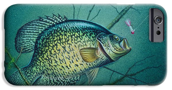 Cabin iPhone Cases - Crappie and Pink Jig iPhone Case by Jon Q Wright