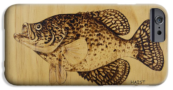 Fish Pyrography iPhone Cases - Crappie iPhone Case by Ron Haist