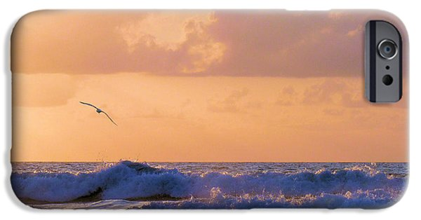 Seagull iPhone Cases - Crash iPhone Case by JC Findley