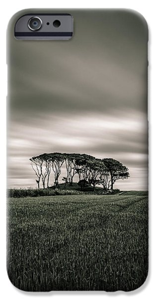 Mounds iPhone Cases - Crawton Copse iPhone Case by Dave Bowman