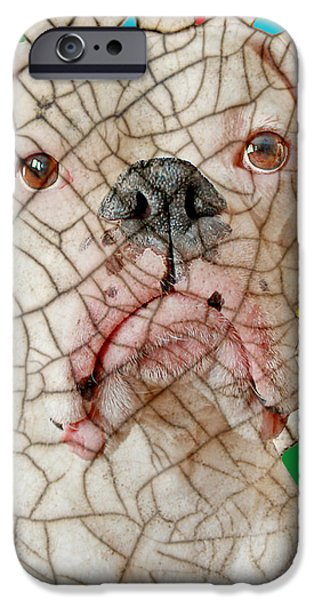 Crazed iPhone Case by Judy Wood