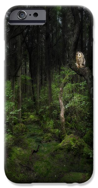 Barred Owl iPhone Cases - Creature Of The Night iPhone Case by Bill  Wakeley