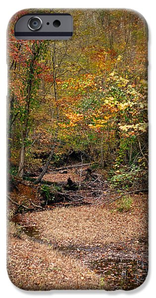 Autumn Scenes iPhone Cases - Creek Bed in Autumn - Fall Landscape iPhone Case by Jai Johnson