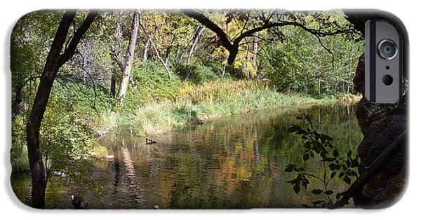 Oak Creek iPhone Cases - Creek in Oak Creek Canyon iPhone Case by Douglas Barnett