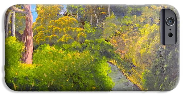Creek iPhone Cases - Creek in the Bush iPhone Case by Pamela  Meredith