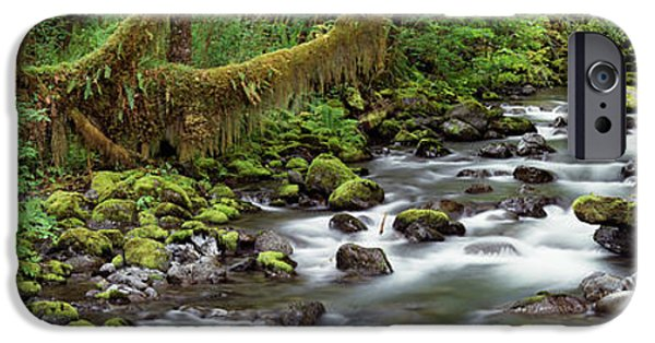 Shade Cover iPhone Cases - Creek Olympic National Park Wa Usa iPhone Case by Panoramic Images