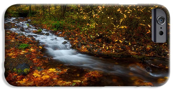 Fall Colors Photographs iPhone Cases - Creekside Colors iPhone Case by Darren  White