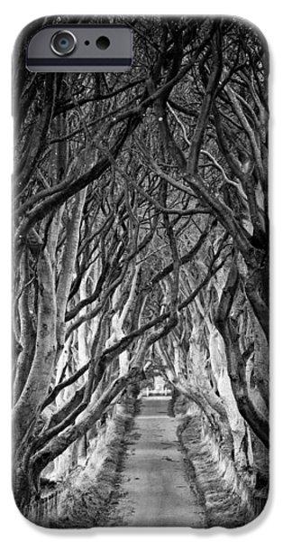 Creepy iPhone Cases - Creepy Dark Hedges iPhone Case by Nigel R Bell