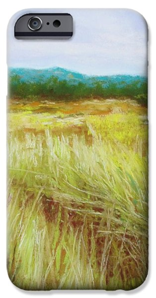Sand Dunes Pastels iPhone Cases - Crescent City Sand Grasses iPhone Case by Sharon Frey