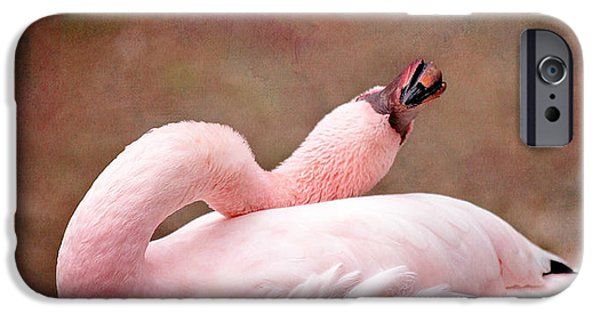 Flamingoes iPhone Cases - Crink iPhone Case by Rebecca Cozart