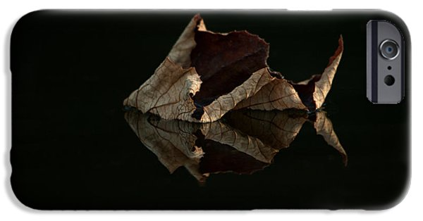 Fallen Leaf On Water iPhone Cases - Crisp Reflections iPhone Case by Heidi Piccerelli