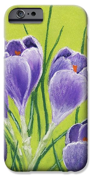 Florals Pastels iPhone Cases - Crocus iPhone Case by Anastasiya Malakhova