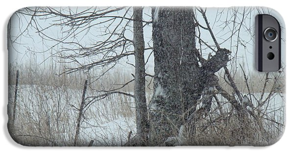 Wintertime iPhone Cases - Crooked Tree In Snowfall iPhone Case by Pam  Wiegert
