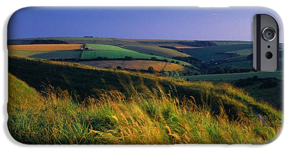Crops iPhone Cases - Crop In A Field, Shaftesbury, Dorset iPhone Case by Panoramic Images