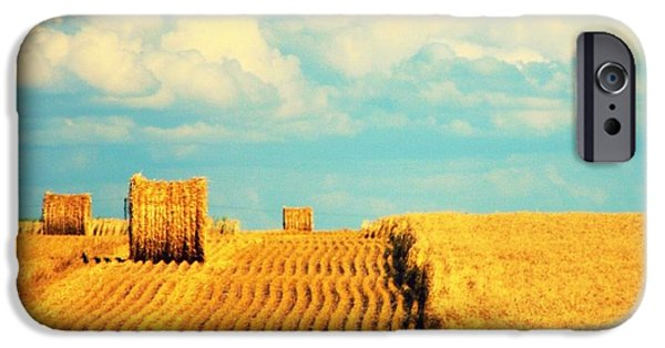 Haybale iPhone Cases - Crop Lines iPhone Case by Jessica Krieser