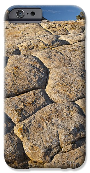 Slickrock iPhone Cases - Cross-bedded Sandstone Slickrock iPhone Case by John Shaw