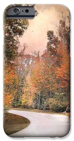 Autumn Scene Photographs iPhone Cases - Crossing Over iPhone Case by Jai Johnson