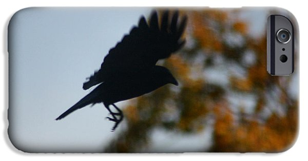 Red Leaf Digital Art iPhone Cases - Crow In Flight 1 iPhone Case by Gothicolors Donna Snyder