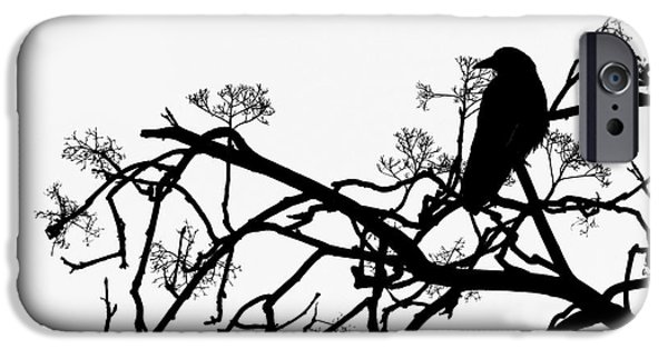 Filigree iPhone Cases - Crow iPhone Case by Jasna Buncic