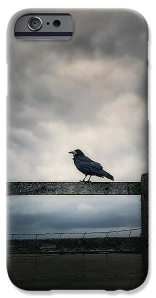 Creepy iPhone Cases - Crow iPhone Case by Joana Kruse