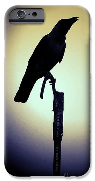 Crows Pyrography iPhone Cases - Crow iPhone Case by Sanjay kanti Seth