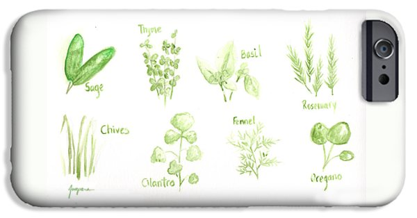 Tree Roots Drawings iPhone Cases - Culinary Herbs Leafy Greens iPhone Case by Patricia Awapara