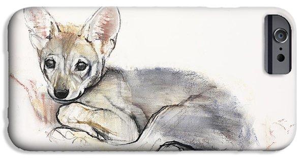 Arabian iPhone Cases - Curled Arabian Wolf Pup iPhone Case by Mark Adlington