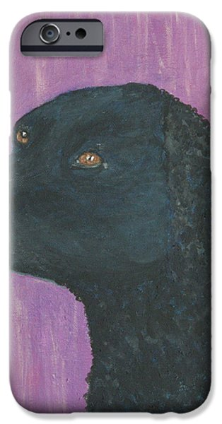 Dogs iPhone Cases - Curly Coated Retriever iPhone Case by Aat Kuijpers
