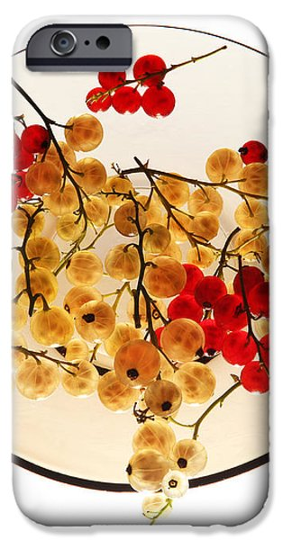 Currants on a plate iPhone Case by Vitaliy Gladkiy