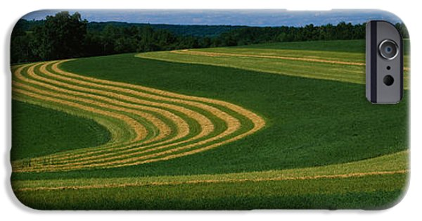 Crops iPhone Cases - Curving Crops In A Field, Illinois, Usa iPhone Case by Panoramic Images