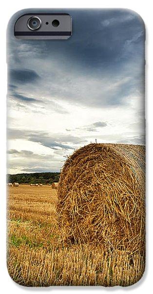 Cut field iPhone Case by Jane Rix