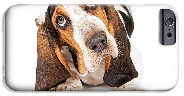 Domestic Animal iPhone Cases - Cute Basset Puppy Tilting Heard iPhone Case by Susan  Schmitz