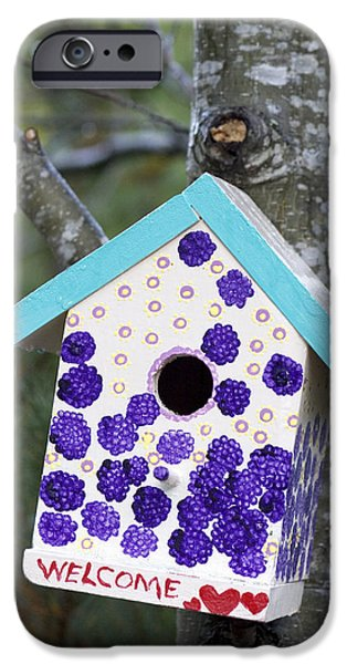 Birdhouse iPhone Cases - Cute Little Birdhouse iPhone Case by Carol Leigh