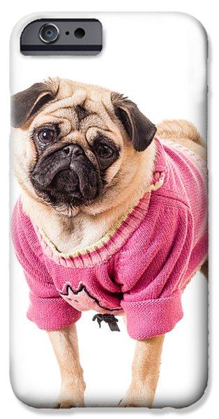 Cute Pug wearing sweater iPhone Case by Edward Fielding
