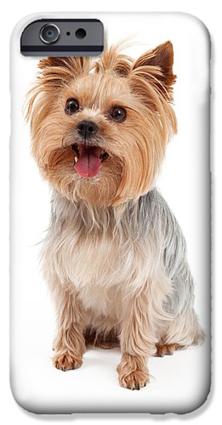 Yorkshire Terrier iPhone Cases - Cute Yorkshire Terrier Dog Sitting iPhone Case by Susan  Schmitz