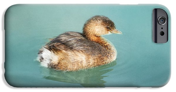 Baby Bird iPhone Cases - Cuteness iPhone Case by Kim Hojnacki