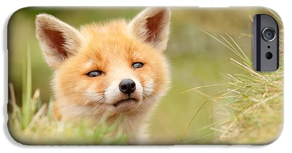 Cute. Sweet iPhone Cases - Cutie Face _Red Fox Kit iPhone Case by Roeselien Raimond