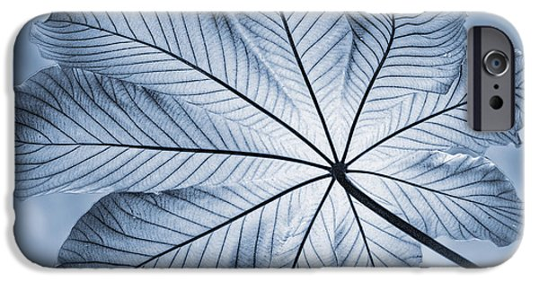 West Indies iPhone Cases - Cyanotype Rain forest leaf iPhone Case by John Edwards