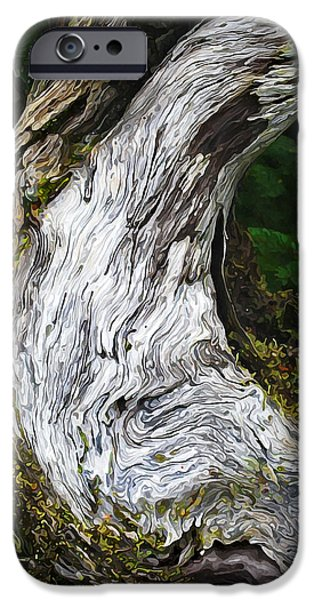 Nature Study iPhone Cases - Cycle of Life iPhone Case by Bill Caldwell -        ABeautifulSky Photography