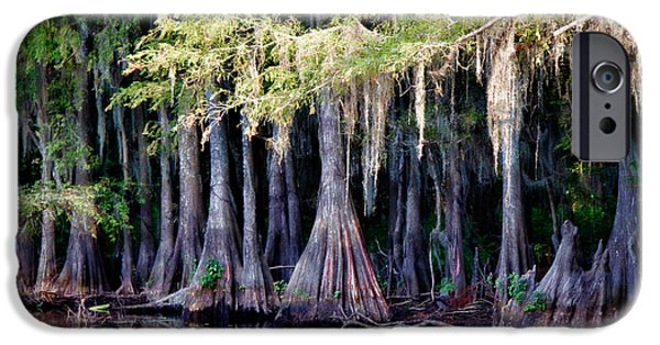 Caddo Lake iPhone Cases - Cypress Bank iPhone Case by Lana Trussell