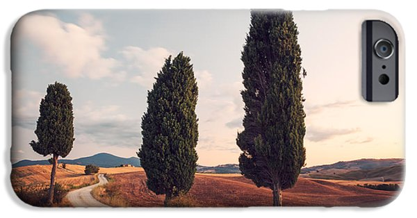 Tuscan Road iPhone Cases - Cypress lined road in Tuscany iPhone Case by Matteo Colombo