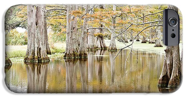 Arkansas iPhone Cases - Cypress Slough iPhone Case by Scott Pellegrin