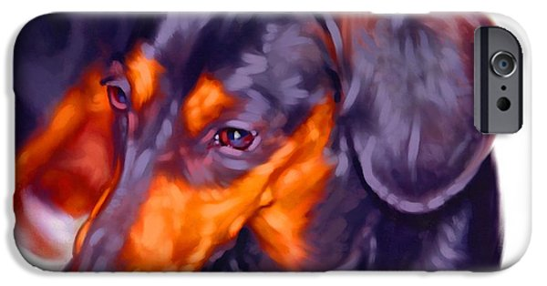 Cute Puppy Pictures Digital Art iPhone Cases - Dachshund Art iPhone Case by Iain McDonald