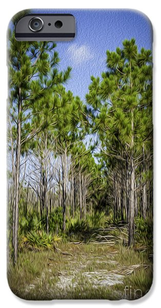 Pines iPhone Cases - Dade County Pine Land iPhone Case by Scott Mullin